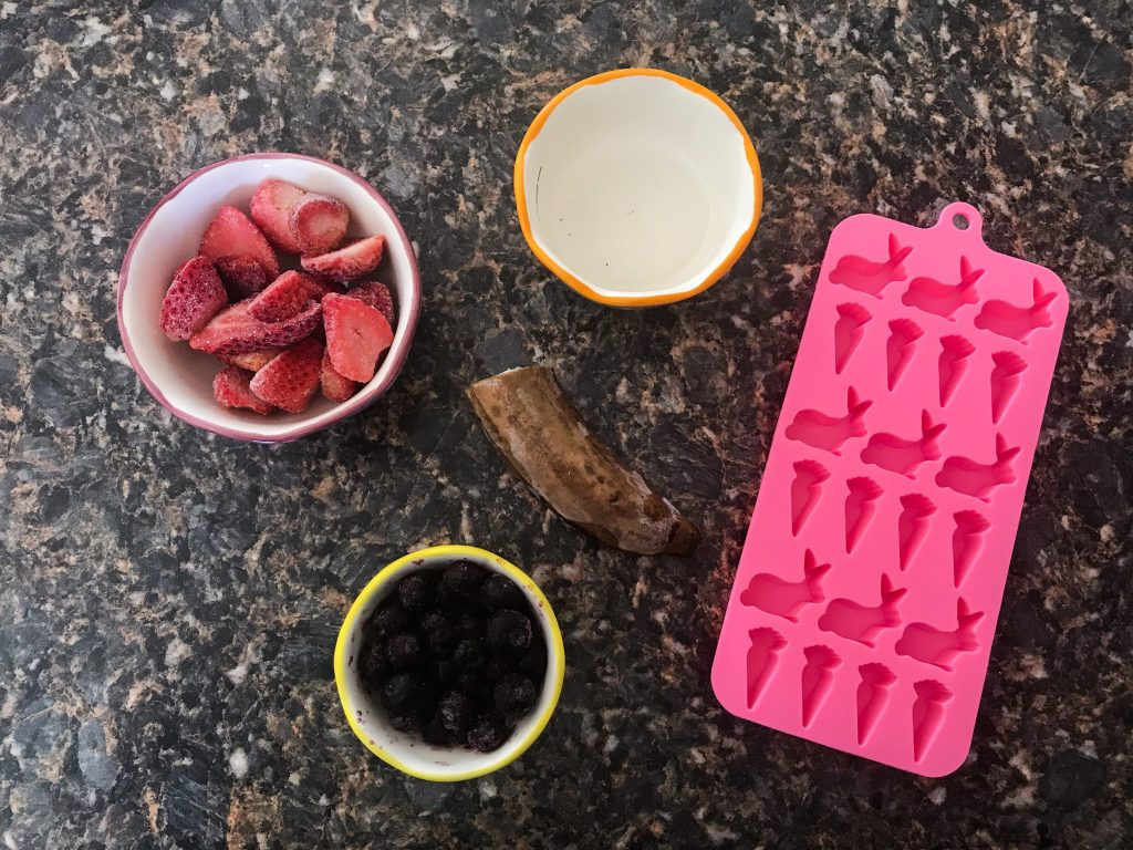 DIY Easter Treats - The ingredients for Frozen Strawberry-Blueberry Layered Dog Treats